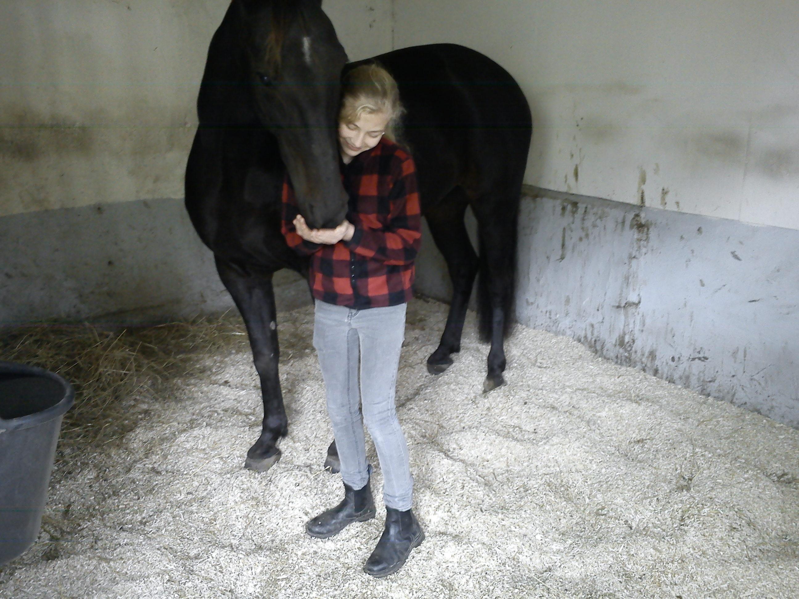 strö till häst